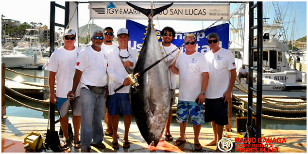 Cabo Sport Fishing is Like a Box of Chocolates